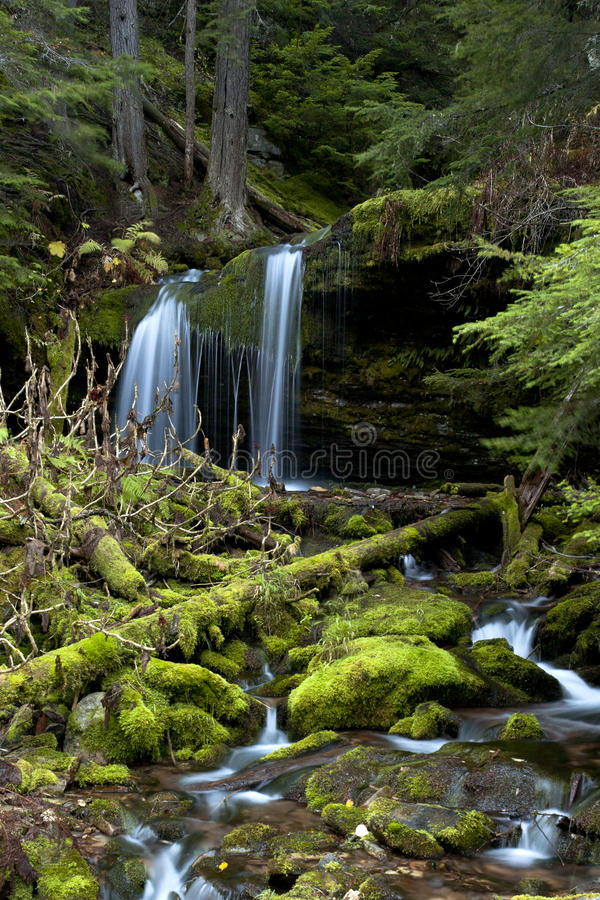 Download Moss Covered Rocks In Stream. Stock Photo - Image: 16622932