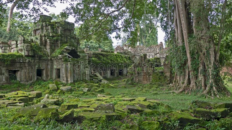 Mossy ruins of Angkor Wat temples in Cambodia royalty free stock images