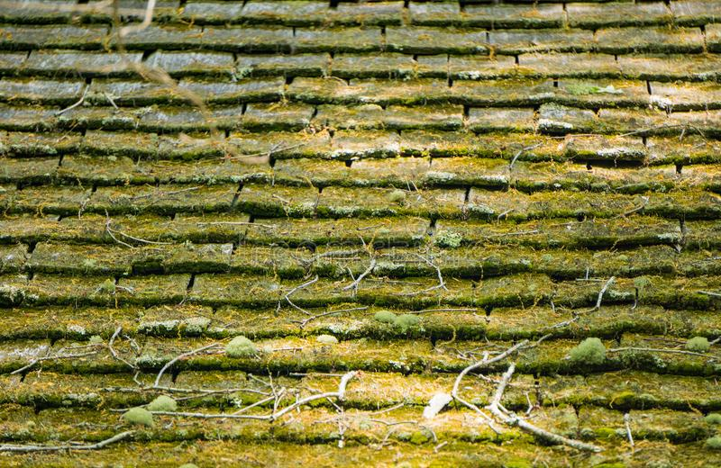 Moss Covered Weathered Wooden Shingle-Dak - Horizontale Achtergrond stock foto's