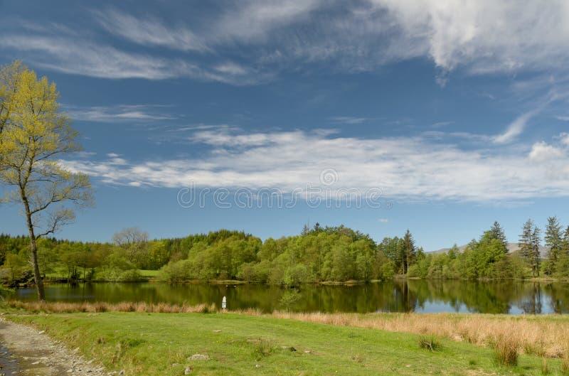 Moss Eccles Tarn op Claife-Hoogten, Meerdistrict royalty-vrije stock afbeelding