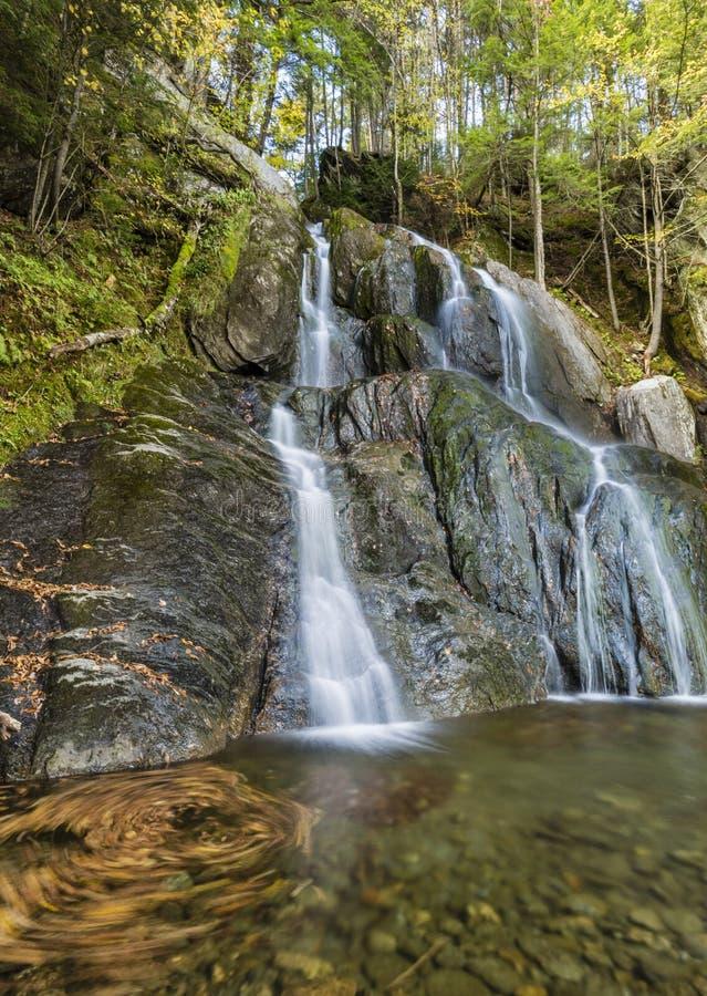 Moss Glen Falls Leaf Swirl fotografering för bildbyråer