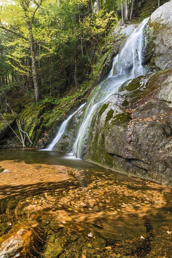 Moss Glen Falls Leaf Vortex photo libre de droits