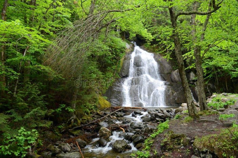 Moss Glen Falls, Vermont, USA lizenzfreies stockbild