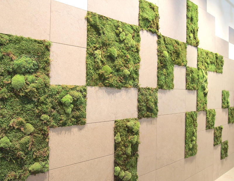Moss pattern wall. Moss pattern with wall tiles on panel royalty free stock photography