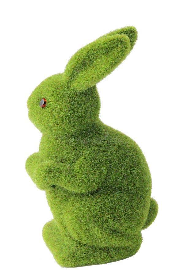 Moss Rabbit immagine stock libera da diritti