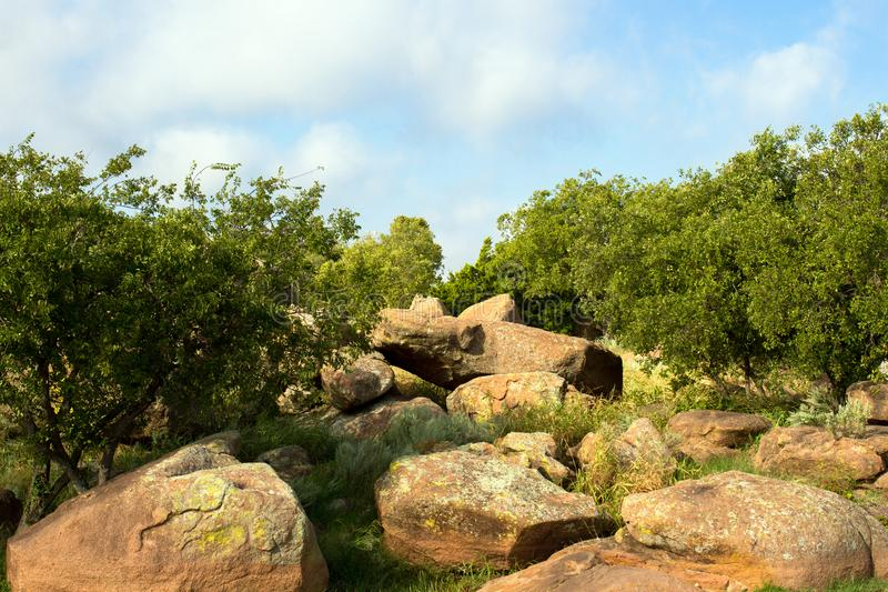 Great Plains State Park. Moss Rock boulders on the lakeshore, Tom Steed Reservoir, at Great Plains State Park in Oklahoma stock image