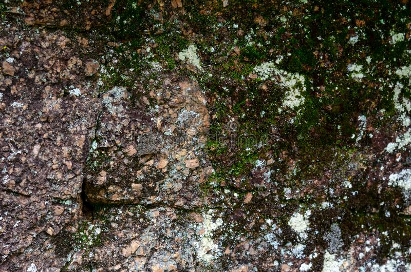 Moss on a rock face. Relief and texture of stone with patterns and moss. Stone natural background. Stone with Moss. Stones royalty free stock photography