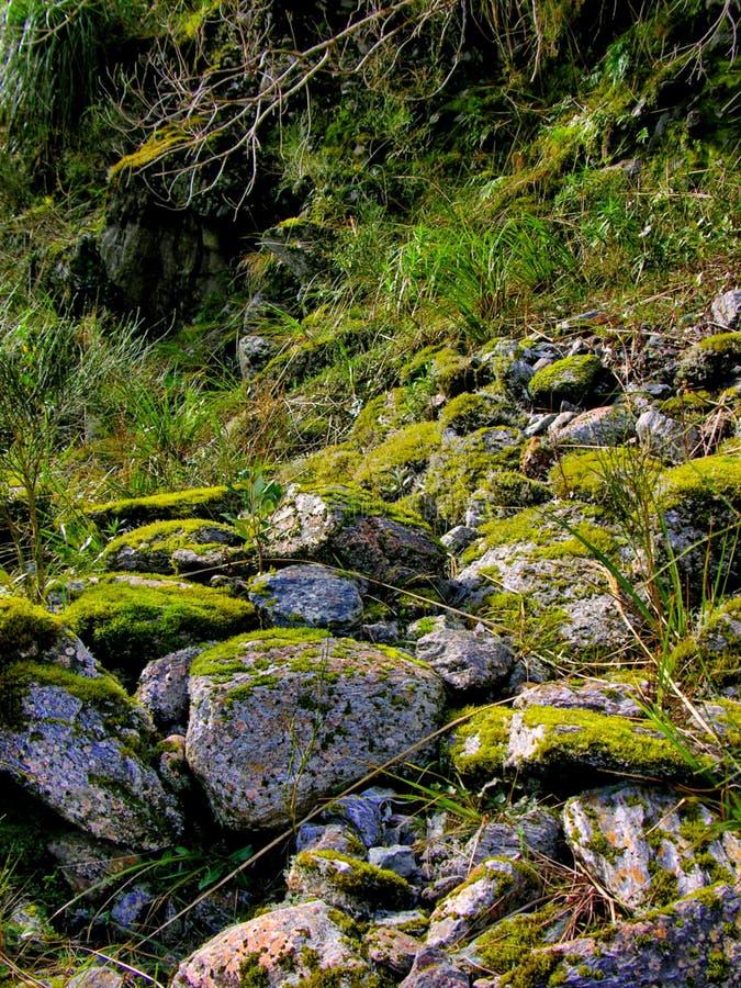 Moss Rocks stock photo