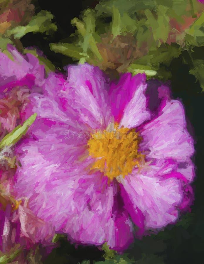Moss Rose Blossom magenta abigarrado del rosa y blanco imagenes de archivo