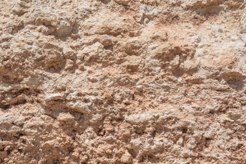 moss skały kamienia konsystencja Dla projekta z kopii przestrzenią dla teksta lub wizerunku zdjęcia royalty free