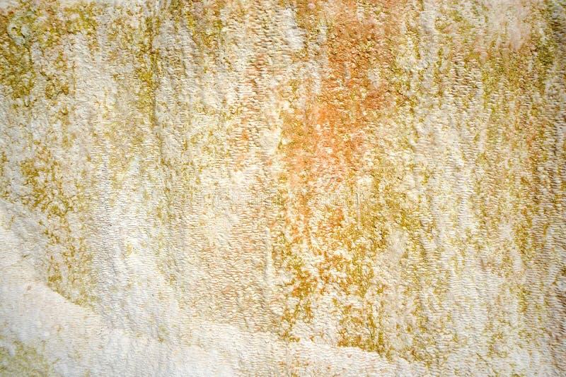 moss skały kamienia konsystencja unikalna teren tekstura geofizyczny Powulkaniczne skały obrazy stock