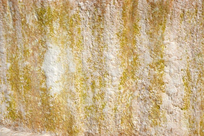 moss skały kamienia konsystencja unikalna teren tekstura geofizyczny Powulkaniczne skały zdjęcie royalty free