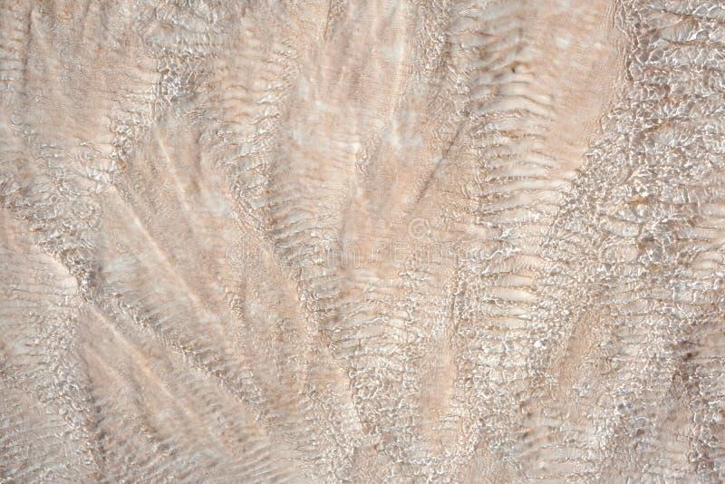 moss skały kamienia konsystencja unikalna teren tekstura geofizyczny Powulkaniczne skały obrazy royalty free