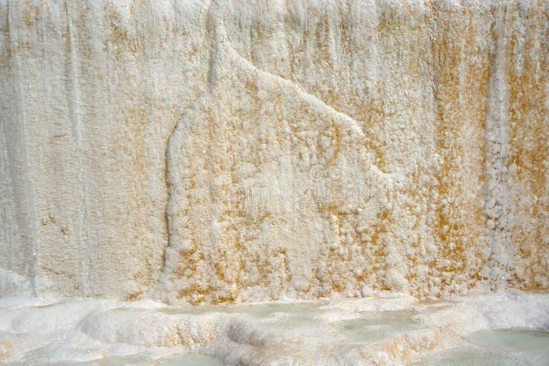 moss skały kamienia konsystencja unikalna teren tekstura geofizyczny Powulkaniczne skały obraz royalty free