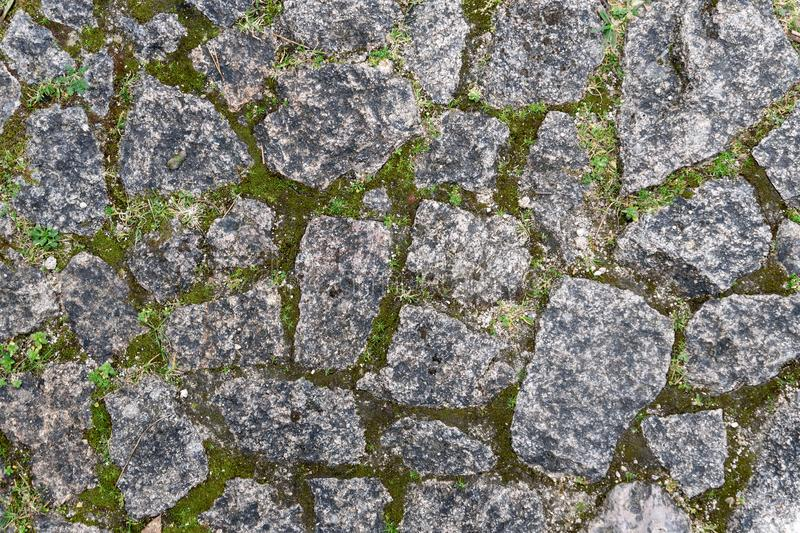 Moss and Stone Texture for Background stock photos