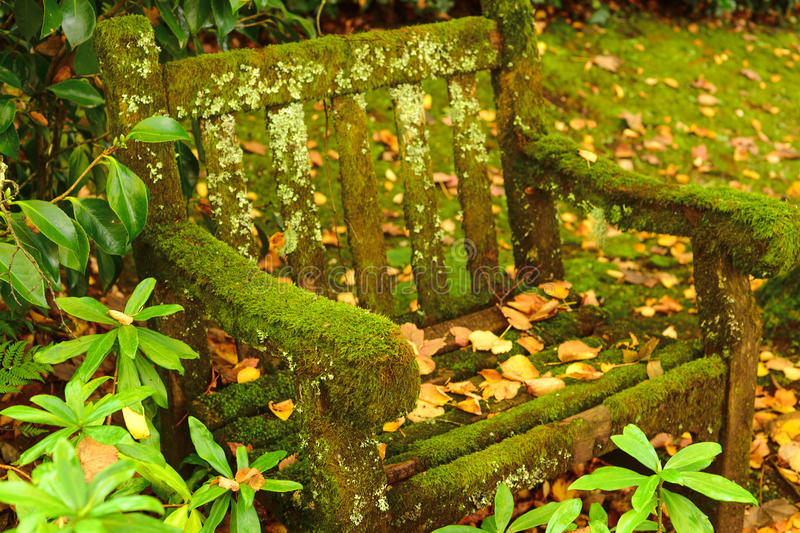 Moss and vegetation covered dirty park bench in garden royalty free stock image