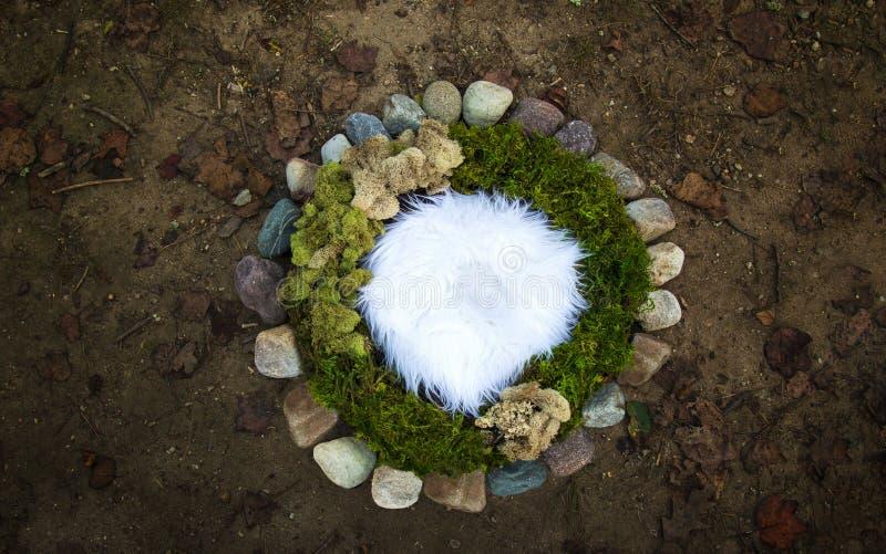 Mossa och flodstenen vaggar lodisar för nyfött fotografi för natur digitala royaltyfri foto