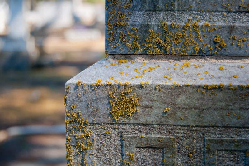 Mossa på gravstenen arkivfoton