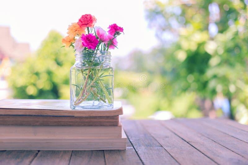 Mossa steg blommor i den glass kruset på böcker på trätabellen med nat royaltyfria bilder