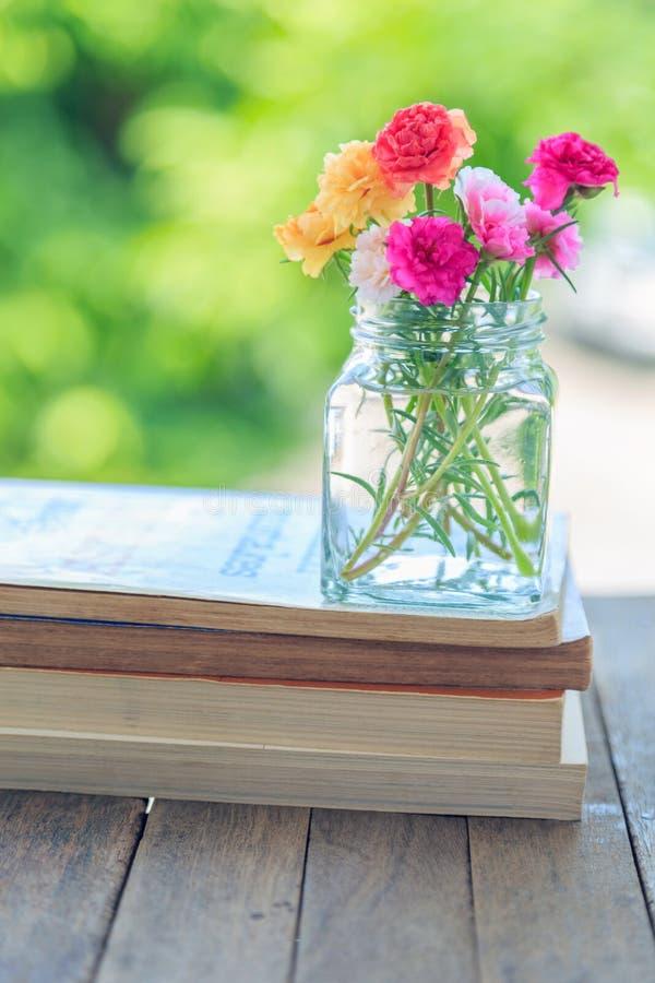 Mossa steg blommor i den glass kruset på böcker på trätabellen med nat arkivbilder