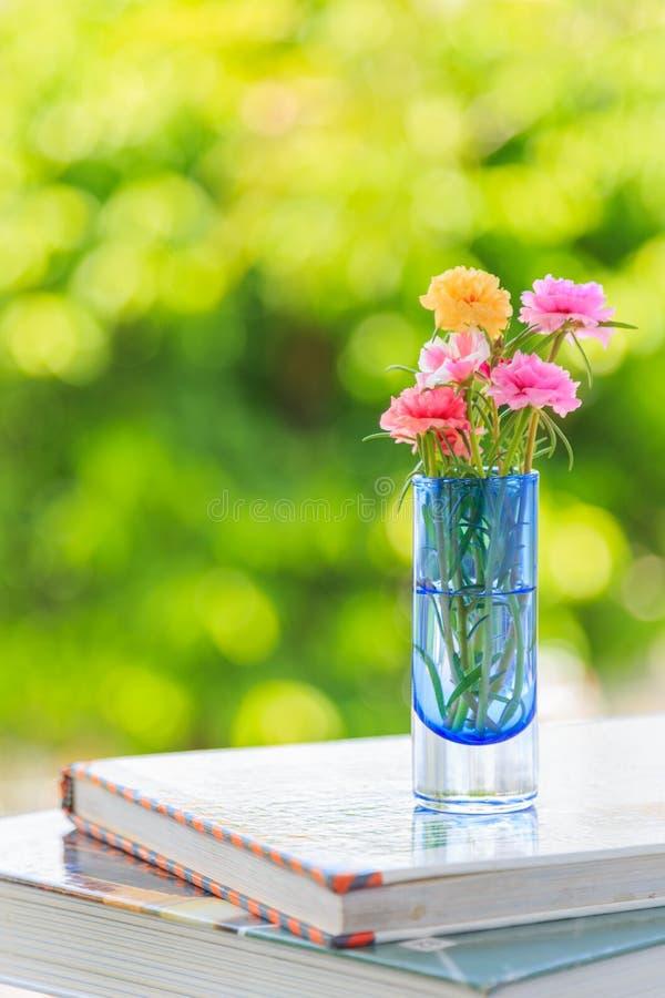 Mossa steg blommor i en vas på böcker med naturbakgrund arkivfoto
