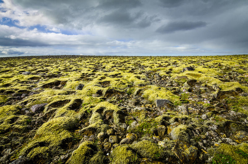 Mossa täckte landskap med avlägsen sikt till horisonten och moln arkivfoton