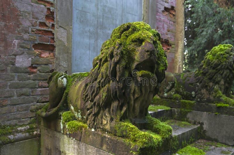 Mossa-täckte stenskulpturer av lejon royaltyfria bilder