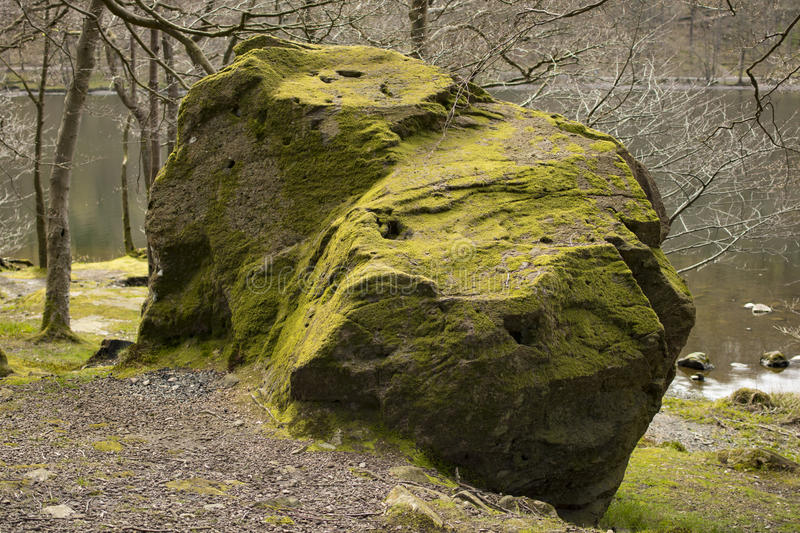 Mossed boulder royalty free stock image