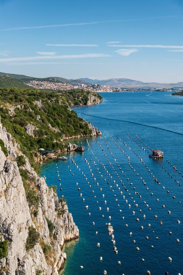 Mosselenlandbouwbedrijf in Adriatic stock foto