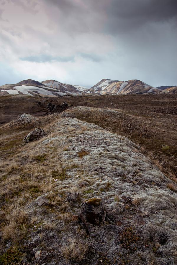 Mossig rund kulle i Island royaltyfri fotografi