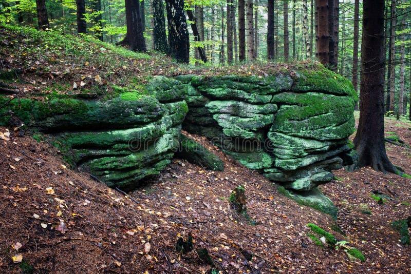 Mossiga stenblock i skogen royaltyfri foto