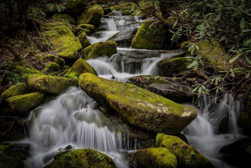 Mossiga stenblock med att rusa vatten royaltyfria foton