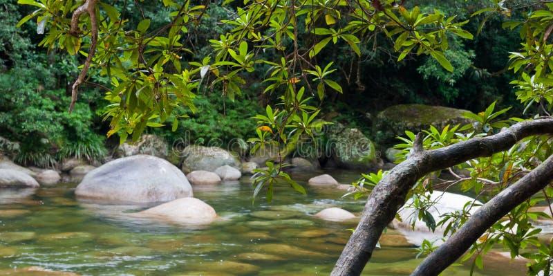mossman εθνικό πάρκο φαραγγιών daintree στοκ εικόνες
