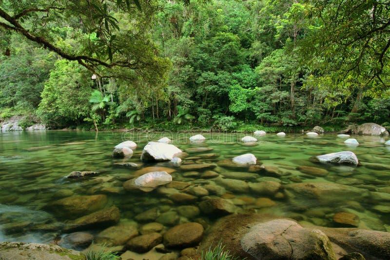 Mossman Gorge royalty free stock photos