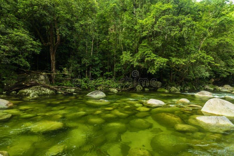 Mossmankloof - rivier in het Nationale Park van Daintree, Queensland, Aus stock afbeeldingen