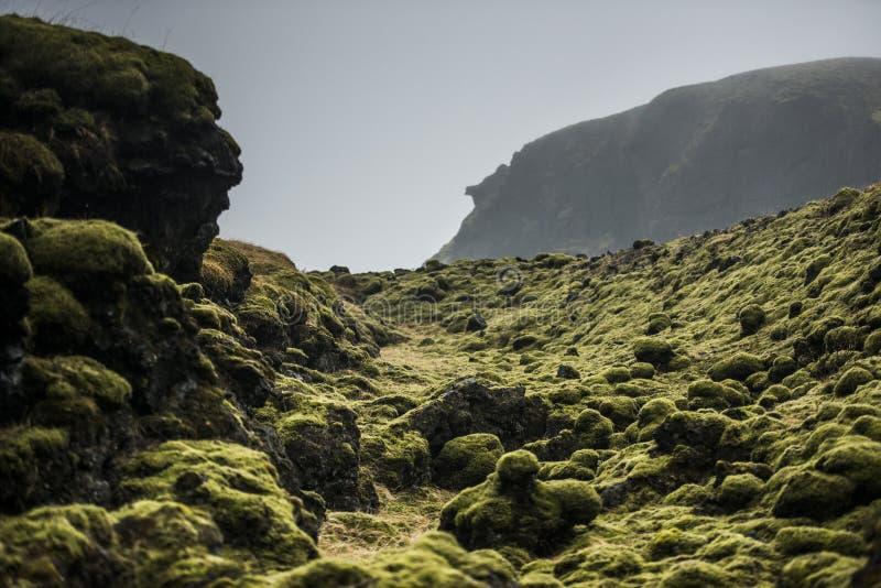 Mossy βράχοι λάβας, Ισλανδία στοκ φωτογραφίες με δικαίωμα ελεύθερης χρήσης
