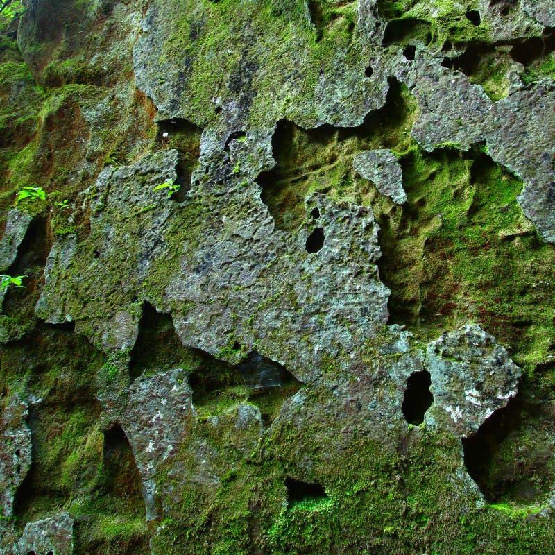 mossy βράχος ανασκόπησης στοκ φωτογραφίες με δικαίωμα ελεύθερης χρήσης