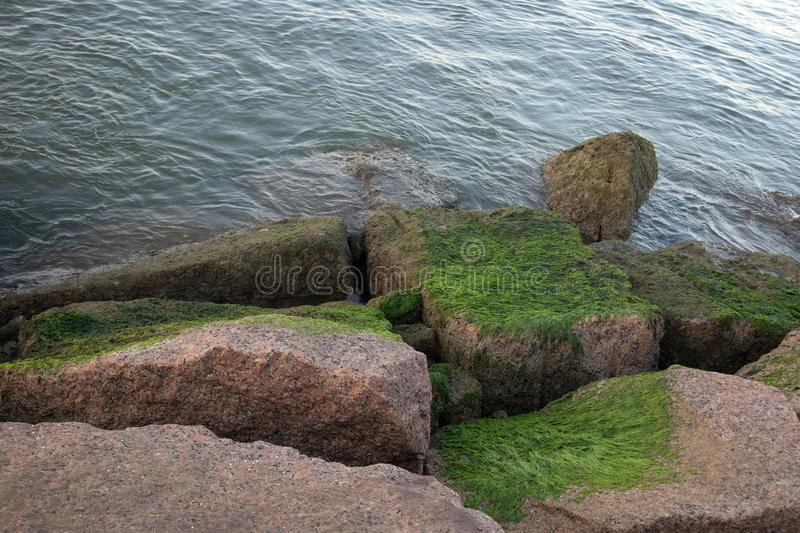 Mossy boulders on shore leading to water royalty free stock photo