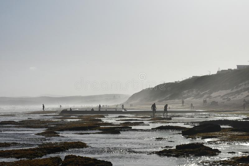 Mossy Coaster Rock Pools No Dia De Verão fotografia de stock royalty free