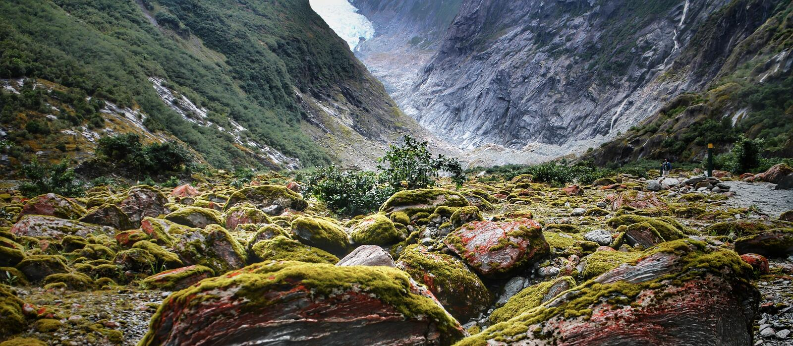 Mossy rocks pile up in the valley under Franz Josef Glacier on New Zealand's South Island. Mossy rocks pile up in the valley  franz josef glacier on new stock photos