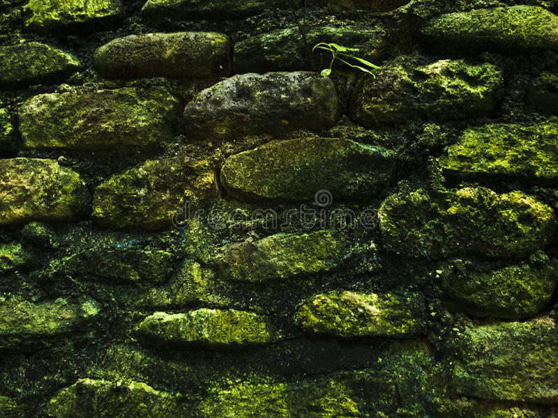 Mossy rustic stone wall closeup photo texture. Rough stone wall of ancient building. stock images