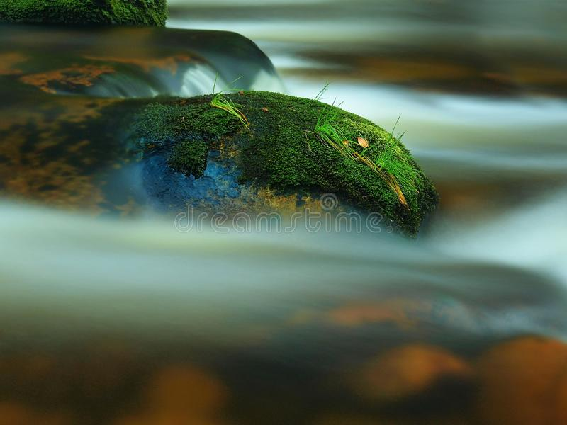 Mossy stone with grass in the mountain stream. Fresh colors of grass, deep green color of wet moss and blue milky water royalty free stock photos