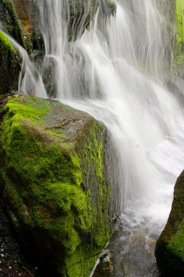 mossy vattenfall royaltyfria bilder