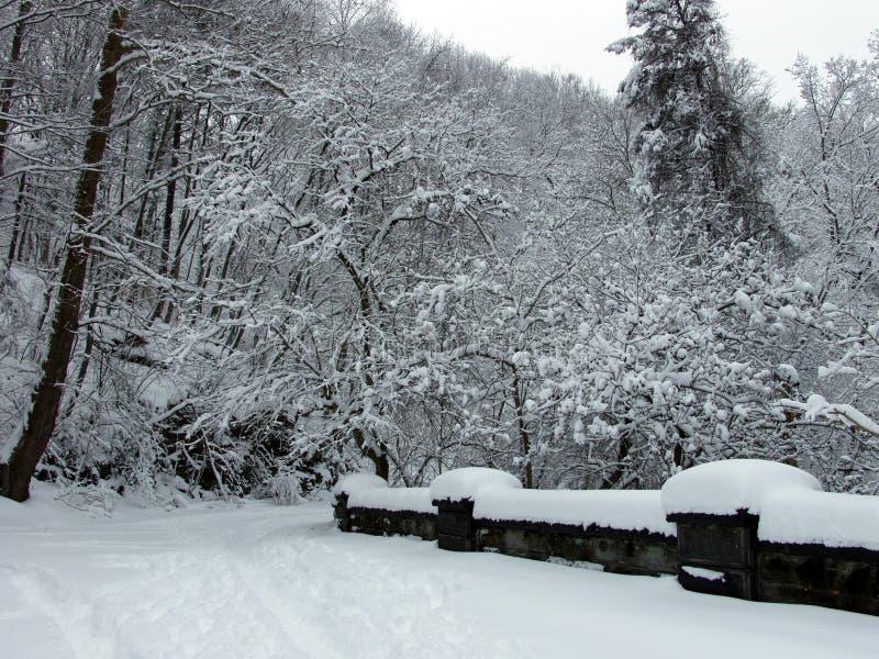 most śnieg obrazy stock