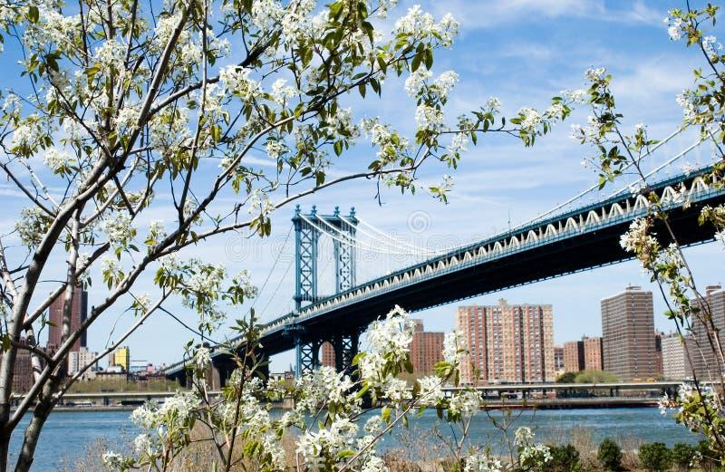 Download Most. obraz stock. Obraz złożonej z podróż, związek, most - 138141