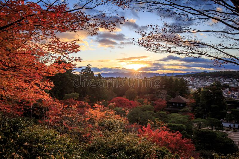 Most beautiful place of Art Zen Garden. And Fall Foliage in Autumn Ryoan-ji Temple, Kyoto Prefecture, Japan stock photography