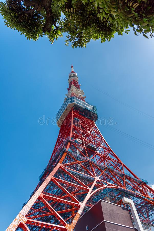 The most beautiful Viewpoint Tokyo tower in tokyo city ,japan stock photo