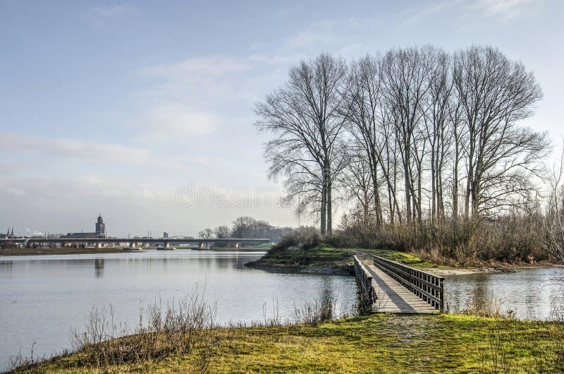 Most, drzewa, rzeka i miasto, obraz stock