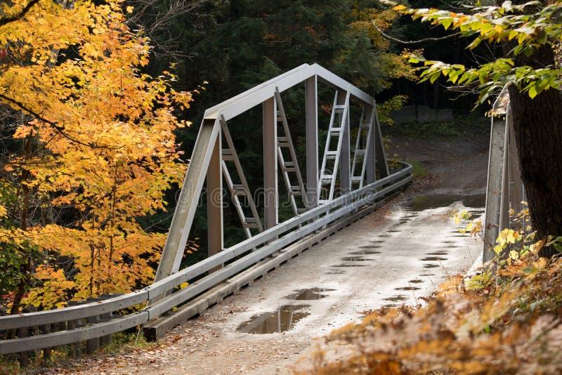 Most nad gryfa wąwozem w jesieni fotografia stock