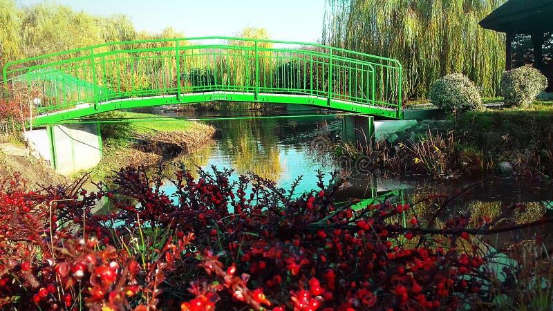 most nad rzeką Jagodowi krzaki jesień błękit długa natura ocienia niebo obrazy royalty free